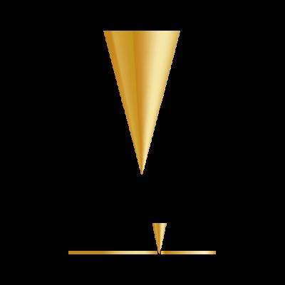 anaegjuvogin logo gull 01
